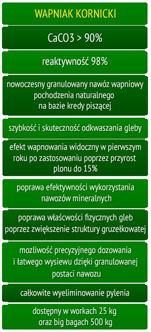 Wapniak Kornicki